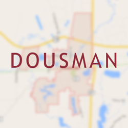 Dousman Chimney Services