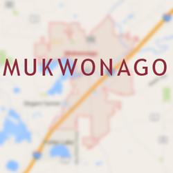 Mukwonago Chimney Services: Inspection, Cleaning, Inspection, Rebuilding and Repair, and Dryer Vent Cleaning